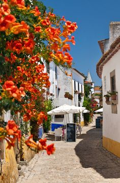 Doesn't this looking inviting? This is Obidos, Portugal. Portugal Vacation, Places In Portugal, Visit Portugal, Spain And Portugal, Portugal Travel, Travel Around The World, Around The Worlds, Places To Travel, Places To Visit
