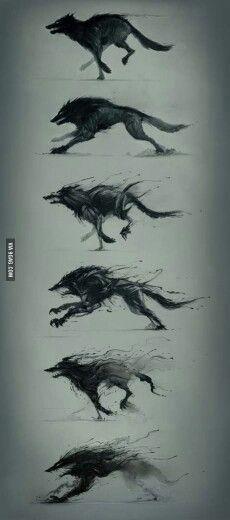 Wolf art: