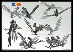 Living Lines Library: Rio (2011) - Character Design