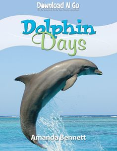 Great Unit Study on dolphins - we are doing it this week to lead up to opening day of Dolphin Tale on Friday!