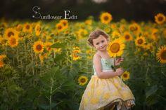 New Preset Release!! Sunflower – Enlightenly