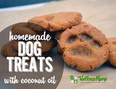 These homemade dog treats are delicious and packed with nutrients. Ingredients like sweet potato, coconut oil, coconut flour, bacon and eggs. Puppy Treats, Diy Dog Treats, Homemade Dog Treats, Dog Treat Recipes, Healthy Dog Treats, Dog Food Recipes, Food Tips, Homemade Gifts, Yummy Recipes