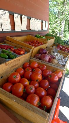 The freshest Maine produce, homemade treats, and ingredients can be found at local farmer's markets throughout the state. Maine Seafood, Visit Maine, Farmers Market Recipes, Fresco, Wicked Good, Fruit Stands, Veggie Tales, Farm Stand, Market Stands