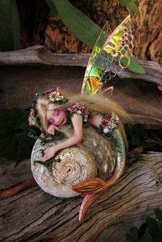Pretty Mermaid Fairy on Shell by Celia Anne Harris OOAK - Made to Order Mermaid Fairy, Baby Fairy, Mermaid Dolls, Elves And Fairies, Clay Fairies, Pretty Mermaids, Fantasy Mermaids, Fairy Figurines, Polymer Clay Dolls