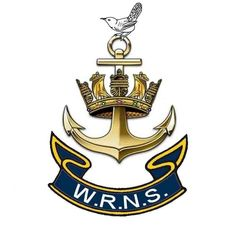 Wrens...the best!