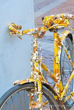 fahrrad neu lackieren fahrr der lackieren und fahrrad ideen. Black Bedroom Furniture Sets. Home Design Ideas