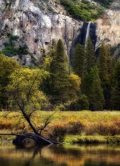 Early morning in Yosemite National Park