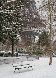 Frankreich / France - Paris - Eiffelturm / Eiffel Tower + Bank / Gartenbank / Parkbank - Bench in the Park / Garden Bench + Winter