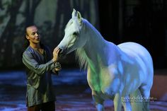 Cavalia in Brussels - A boy's love for his horse.