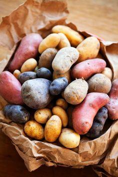 soorten aardappels