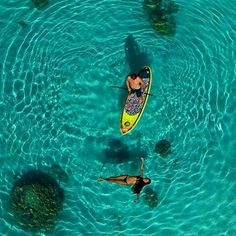 @tahitiflyshoot -  @bixentelizarazu SUP with #mermaid and #stingray Photo :  : @timmckenna & @tahitiflyshoot  @raimanaworld  @ltximista @skyshoot.drone  @saltwaterfamily #drone #aerialphotography #aerialdrone #tahiti @quiksilverwaterman @quiksilver