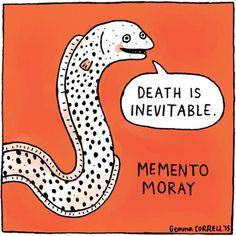 """Death is inevitable"" - Memento Moray. gemma correll"