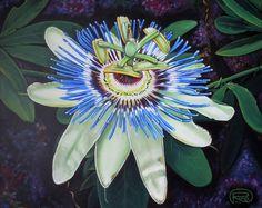Passion flower by Renata Cavanaugh on ARTwanted Passion Flower, Paintings, Artist, Artwork, Flowers, Plants, Work Of Art, Paint, Auguste Rodin Artwork
