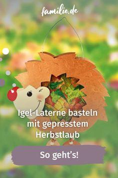 Ihr wollt eine Igel-Laterne basteln? Mit unserer zuckersüßen Bastelidee seid ihr perfekt ausgerüstet für den Sankt-Martins-Umzug, habt eine stimmungsvolle Deko oder den perfekten Begleiter für eine kleine Nachtwanderung durch den Herbstwald. Dort findet ihr übrigens auch die bunten Blätter, die ihr für den stachligen Waldbewohner braucht. #herbst #igel #diy #laterne #sanktmartin Lion, Christmas Ornaments, Holiday Decor, Baby, Autumn Leaves, Kids Discipline, Leo, Christmas Jewelry, Lions
