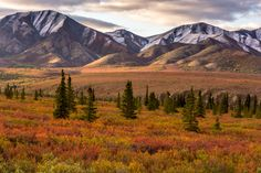 Photo Fall colors on a picturesque landscape by Nishant Dhumane on 500px