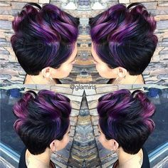 Short Plum and Black Hairdue