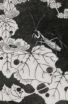 『冬葵(ふゆあおい)』伊藤若冲