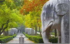 Bing Image Archive: Stone Statue Road elephants at Ming Xiaoling Mausoleum, Zijin Shan, Nanjing, Jiangsu, China (© Ian Trower/Corbis)(Bing United Kingdom) Stone Statues, Nanjing, Image Archive, Going On A Trip, Spiritual Path, Magic Carpet, Day Work, New Pictures, Background Images