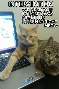 Intervention - We Need You To Step Away From The Internet Right Meow