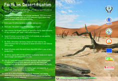 DESERTIFICATION: the process which turns a productive into non- productive desert as a result of poor land-management. Causes:  * Cultivation of lands on which there is a high risk of crop failure and a low profit.  * Destruction of vegetation in arid regions, often for fuelwood.  * Poor grazing management, overgrazing.  * Incorrect irrigation which can prevent plant growth.