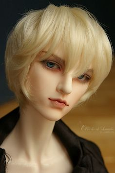 Dollcatch Brad. Ball Jointed Doll (BJD)