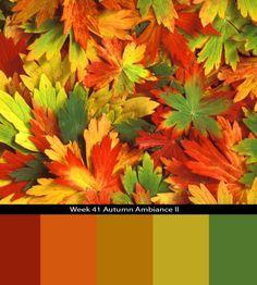 Color Combo Challenge Week 41
