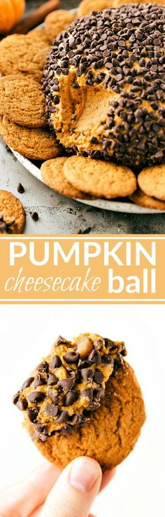EASY PUMPKIN CHEESECAKE BALL! The perfect Fall/Thanksgiving dessert appetizer! A pumpkin chocolate-chip toffee cheesecake ball bursting with pumpkin spice flavor. Recipe from chelseasmessyapron.com