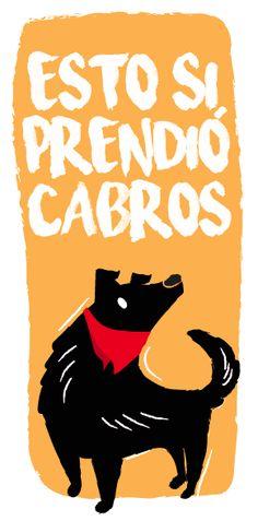 #NegroMataPacos   El arte detrás de un símbolo de revolución social Klimt, Fantasy Creatures, Dog Art, Motion Graphics, Funny Cute, Scooby Doo, Patches, Stickers, Anarchy