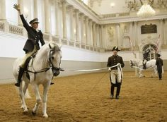 Spanish Riding School - Austria  My next degree will come from here!  What is the book I read about the Spanish Riding School?