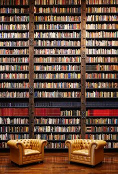 Stony Island Arts Bank, Chicago. Image: Tom Harris © Hedrich Blessing. Courtesy of Rebuild Foundation. ""