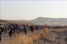Yazids, Cristãos iraquianos fugindo do Estado Islâmico