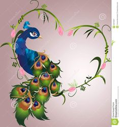 Peacock Vector - Download From Over 38 Million High Quality Stock Photos, Images, Vectors. Sign up for FREE today. Image: 46316027