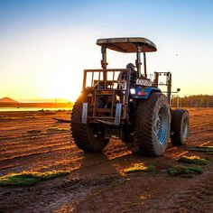 One of our #tractors waiting at #sunrise for the #harvester to complete its pallet of #fresh #turf. You can also see the off-cuts of turf that didn't meet our stringent #quality standards. #twinviewturf are renowned for supplying #quality turf for a #lawnyoullbeproudof. #lawnsolutionsaustralia #morning #goodmorning #turffarm #nature #sun #photography #naturelovers #instamood #instagood #instadaily #sunshinecoast #brisbane #goldcoast