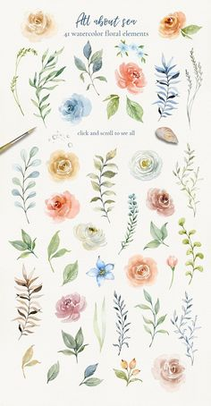 All about sea - watercolor clipart by long summer on @creativemarket