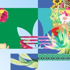 Rosanna Webster Adidas Originals artwork