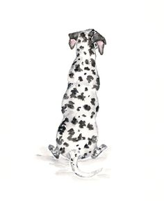 Dog art, watercolor dog painting, watercolor painting, dalmatian, dog gifts, black and white, dog silhouette, watercolor animals, 8X10, $28.00 by ThimbleSparrow