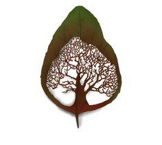 Tattoo Tree Inside of a Leaf Back Tattoos, Leaf Tattoos, Body Art Tattoos, Tatoos, Tree Tat, Cool Tats, Cover Tattoo, Tattoo Designs, Tattoo Ideas