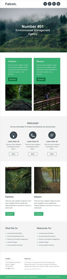 Falcon - Complete Email Package - Responsive Templates + Builder - professional email template