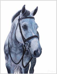 H&SInformal Portrait of Mojito gray outline.jpg