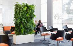 Green Screen room divider