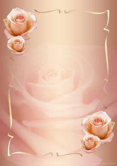 Roses e Gilberto Framed Wallpaper, Flower Background Wallpaper, Frame Background, Flower Backgrounds, Wallpaper Backgrounds, Wallpapers, Image Rose Rouge, Boarders And Frames, Birthday Frames