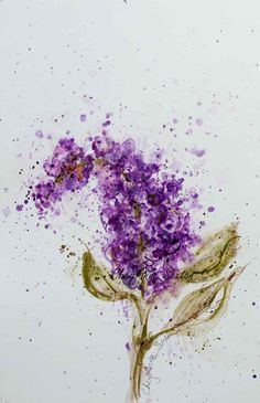 Single Purple Lilac watercolor blossom flower by CheyAnneSexton