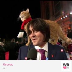 Bob and James on the Red Carpet for the movie Premiere of A street Cat named Bob. Congrats James! U look great!. Bob is so unfazed! such a special soul. Look at him!! loving the attention#Outworldwide4thNov