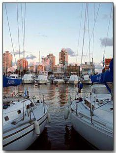 URUGUAY—Punta del Este reminded of a Cape Cod resort town.