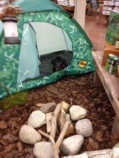 Mom I want to go camping!