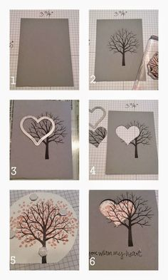 Sheltering Tree Spotlight Card