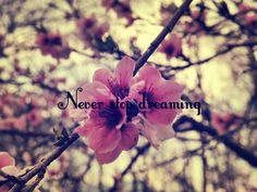 Never stop dreaming.. <3