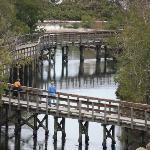 25 things to do in Bradenton  Florida Gulf Islands #DaysInnBradentonNeartheGulf