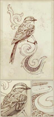 bird Teagan White
