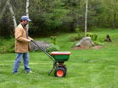 Most lawn fertilizers have about 30 percent nitrogen, which is way too much.  Look for fertilizer with time-releasing water-insoluble nitrogen and use it only twice a year on a steady schedule, like on Memorial Day and after Labor Day. In general, well-irrigated and older lawns need less fertilizer.